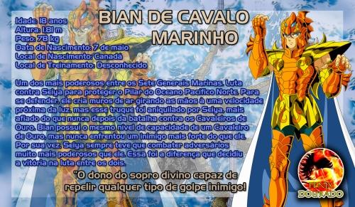 bian_de_cavalo_marinho